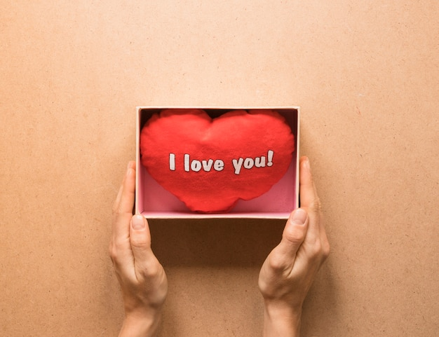 Person holding present box with soft symbol of heart