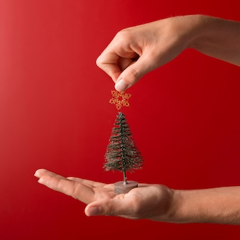 Person holding tree decor and golden star