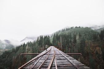 Person on railroad bridge