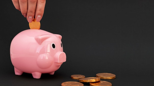 ピンクの貯金箱のコインを入れる人