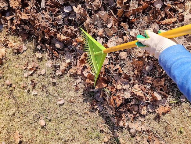 路上で落ち葉を庭師の修復順序で掻き集めている人は、街の秋の季節の家事で庭師の仕事の熊手改良を積み上げて集めます