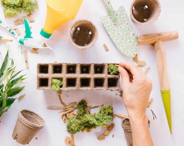 Рука человека, положить мох на торфяной горшок с садовыми инструментами на белом фоне