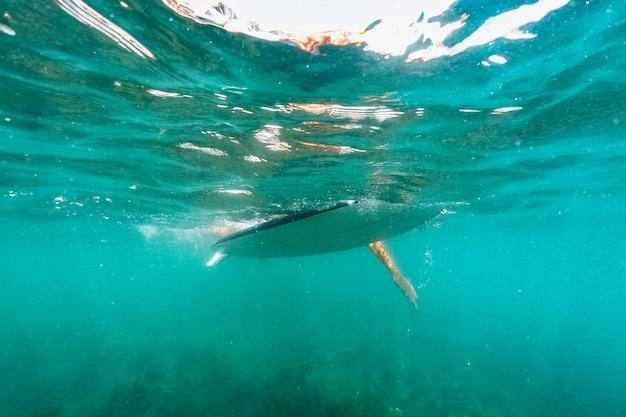 바다에서 서핑 보드에 수영하는 사람
