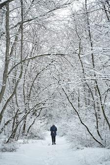Человек, идущий в лесу, покрытом белым снегом.
