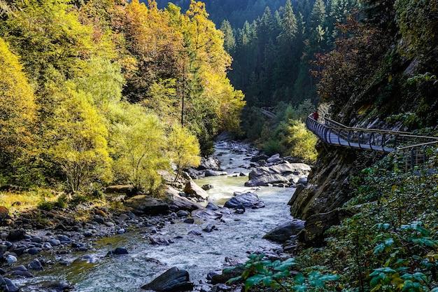 숲에서 강 위의 금속 통로를 걷는 사람