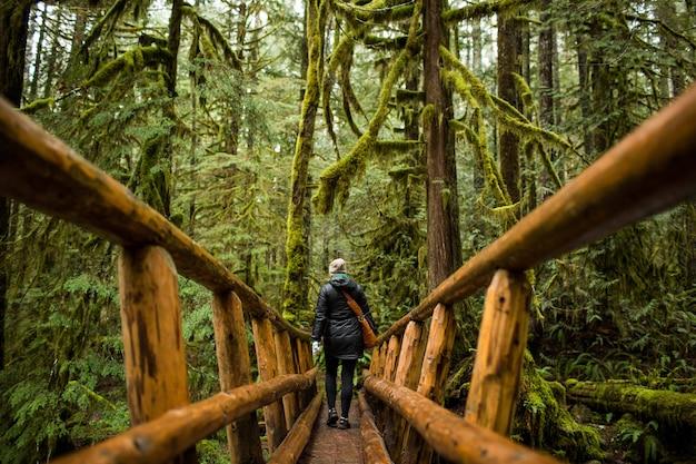 苔むした森のある木製の狭い橋を歩いている人