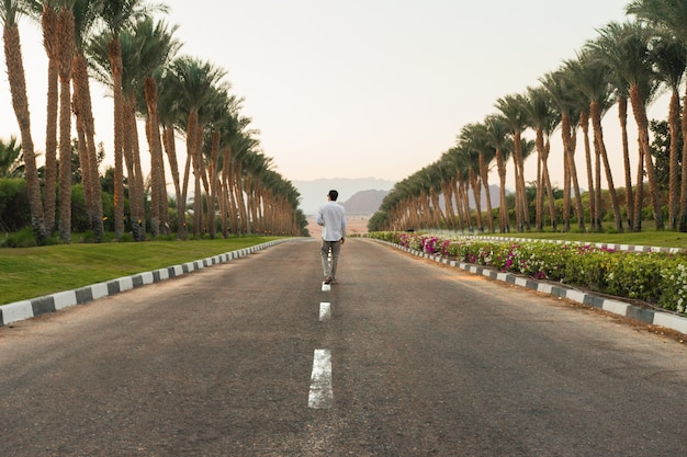 Person walking on the road with palm trees on the sides with a beautiful scenery of sunset