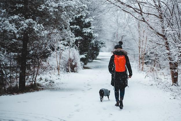 雪に覆われた森の真ん中で犬と一緒に歩く人