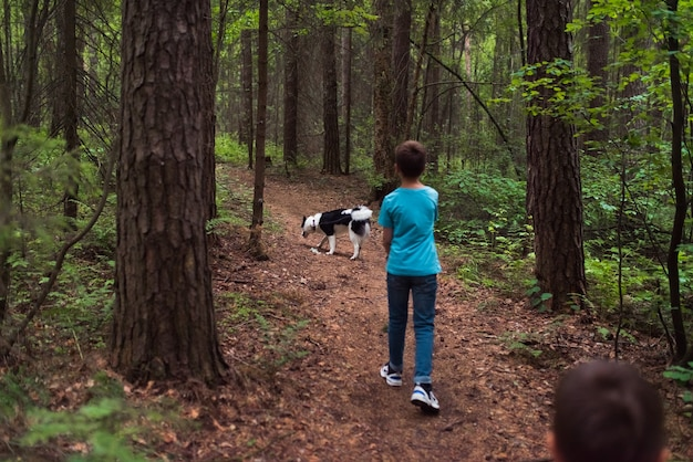 Человек гуляет с собакой в лесу