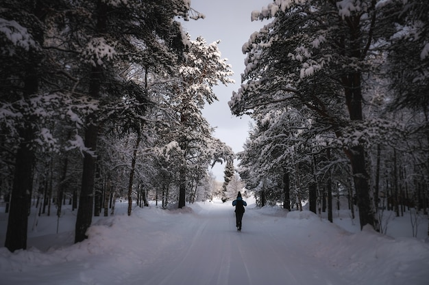 A person in warm clothes walking on a snowy path with trees around