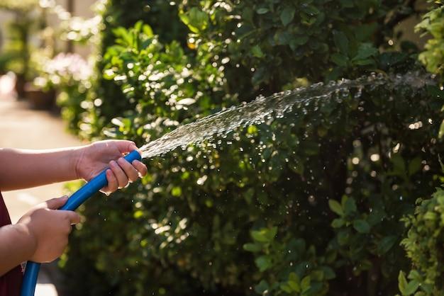 Человек, поливающий кусты