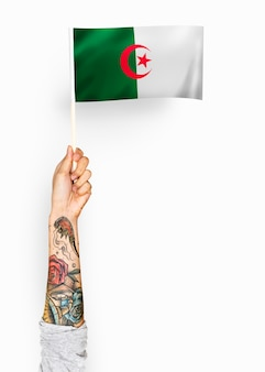 Person waving the flag of people's democratic republic of algeria
