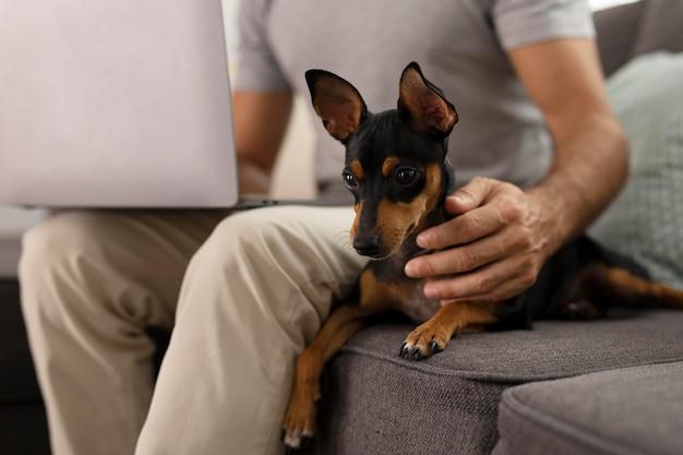 Человек, работающий из дома с собакой