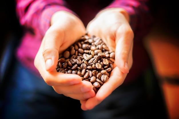 사람 손을 잡고 향기로운 커피 씨앗을 닫습니다