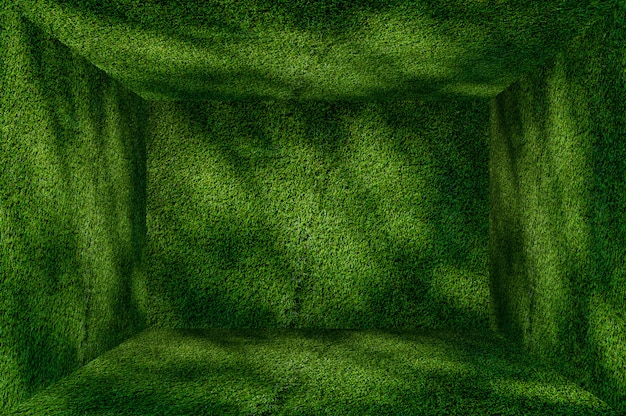 Perspective grass green wall and floor interior background