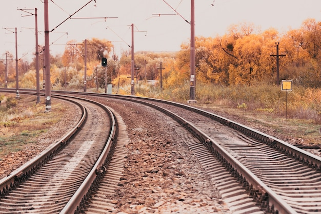 Perspective of railway track with fallen golden linden leaves on it