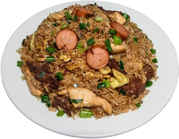Peruvian food arroz chaufa, plate of fried rice with vegetables and different meats.