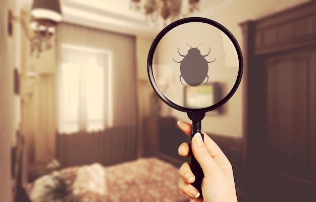 Pest bed bug background bedbug control bedding