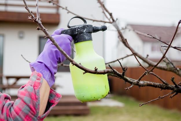 農薬処理、害虫駆除、庭の果樹の昆虫駆除、スプレーボトルからの毒の散布、手のクローズアップ。
