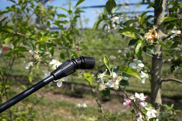 Pesticides treatment of agricultural plants