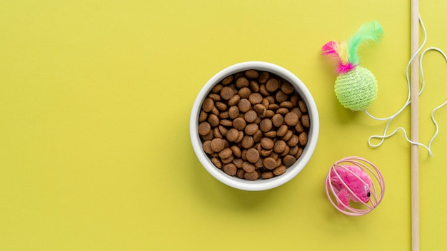 Pet accessories still life concept with cat teaser toy