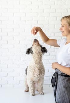ペットの世話。彼女の犬におやつを与える若い笑顔の女性