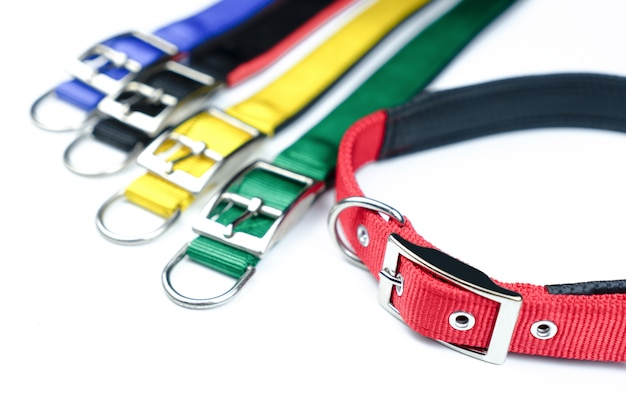 Pet collars on isolated white background