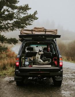 Собака в машине для поездки в горы