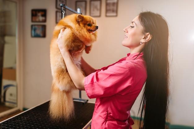 ペットグルーマーは、面白い犬を手に持って、グルーミングサロン、クリーニングサービスをしています。家畜のためのプロの新郎と髪型
