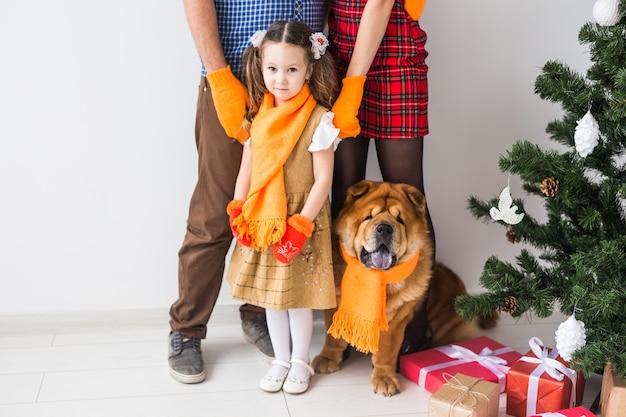 Домашнее животное, праздники и праздничная концепция - крупный план семьи с собакой стоят возле елки.