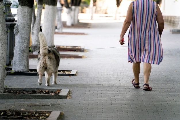 A pet owner walking with pet in the outdoors