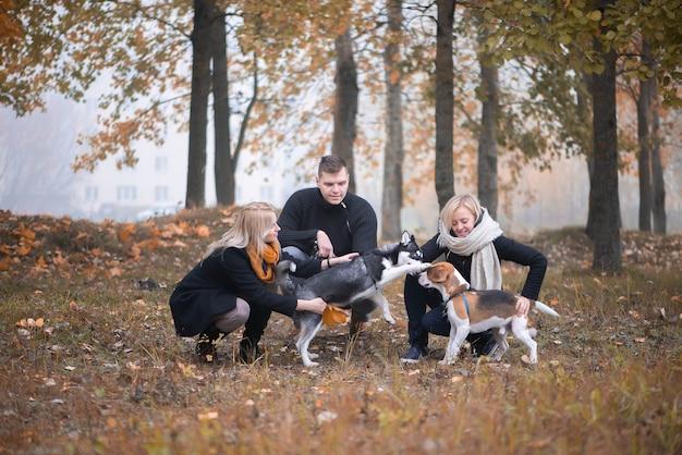 Владельцы сибирских хаски и биглей приятно проводят время в городском парке осенним утром.
