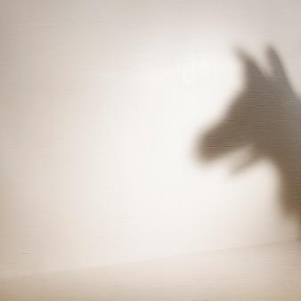 茶色の壁にペットの影