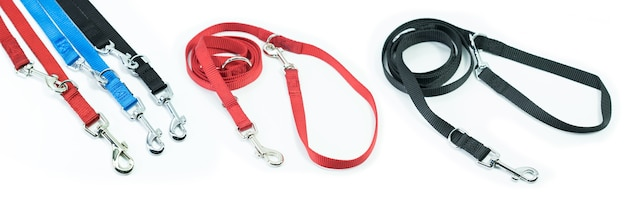 Pet supplies set about leash for pets isolated on white background