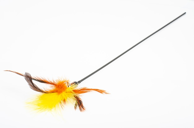 ペットのおもちゃ。猫用の色付きの羽にこだわる。スタジオ写真。