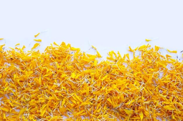 マリーゴールドの花の花びら