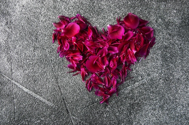 Petals of a peony in the shape of a heart