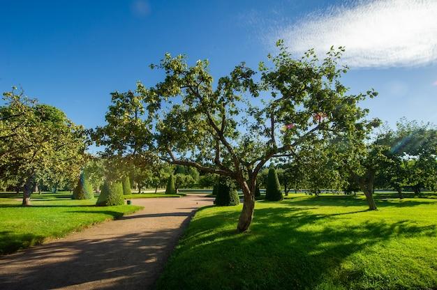 Петергофский парк в санкт-петербурге в россии