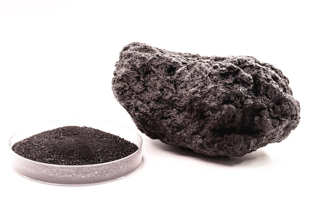 숯 조각, 고립 된 흰색 표면 옆에 가루 석탄 페트리 접시