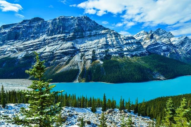 カナダ、アルバータ州、バンフ国立公園のpeyto湖。