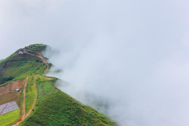 プーphaeng ma、phu tubberk、タイでの朝の霧