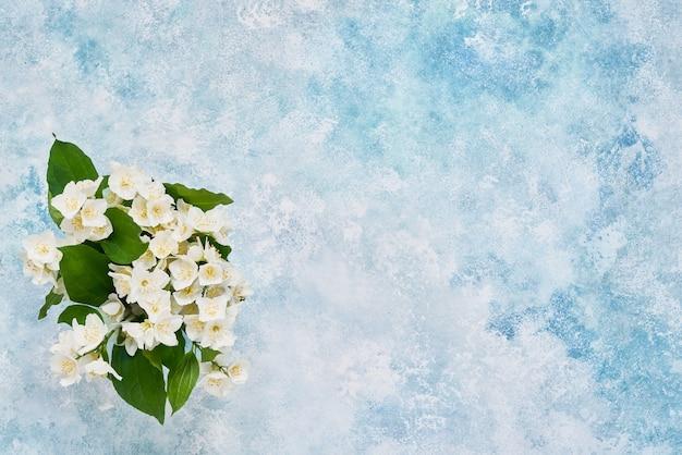 Букет цветов филадельф или псевдоранжевый на синем пастельном фоне. плоская планировка