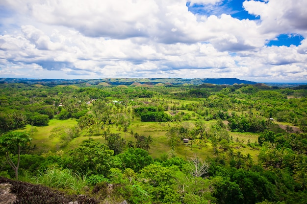Philippine landscape on the island of bohol