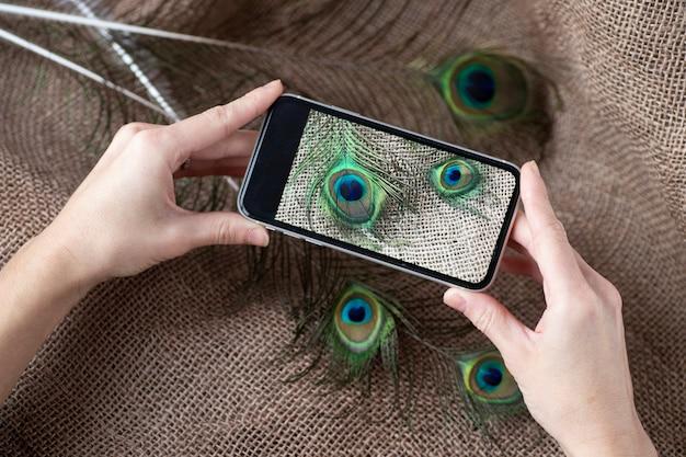 孔雀の羽の写真を手にした電話。