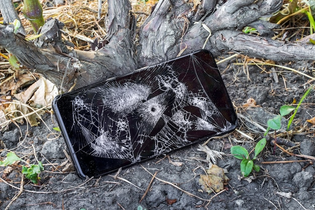 A phone with a bullet hole near the dry branches of the grapes