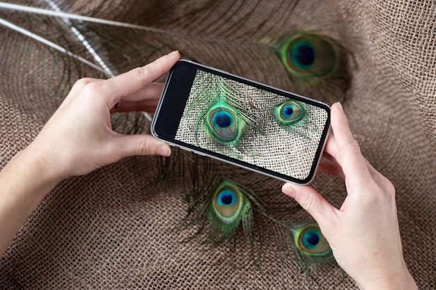 Phone with a photo of peacock feathers in hands.