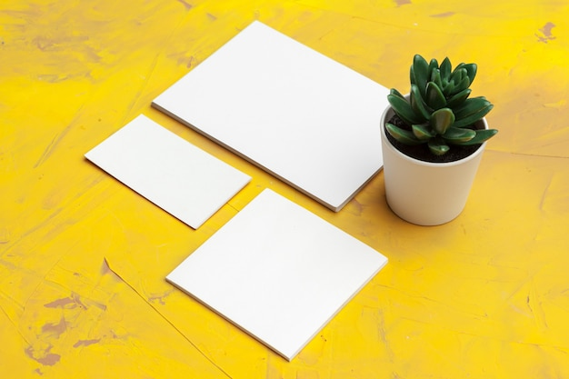Photo of blank business cards mockup with plant