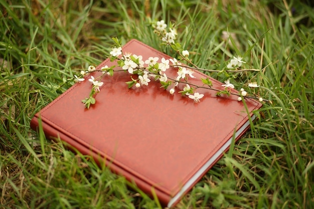 Photo book on the grass