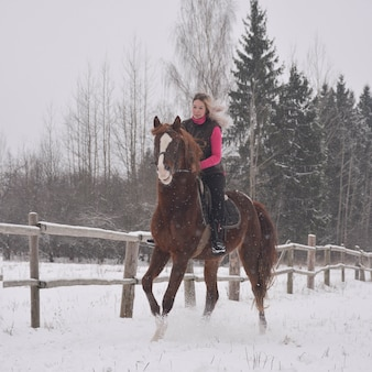 Photo of a cute girl riding a horse on a winter background