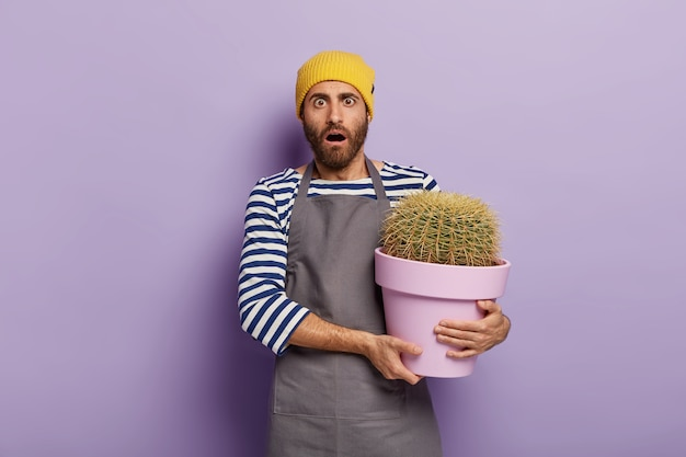 Photo of emotive scared male florist afraids of overwatering cactus, holds pot of house plant